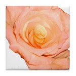 Peach Rose Tile Coaster