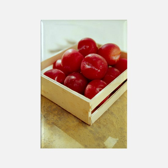 Plums Rectangle Magnet