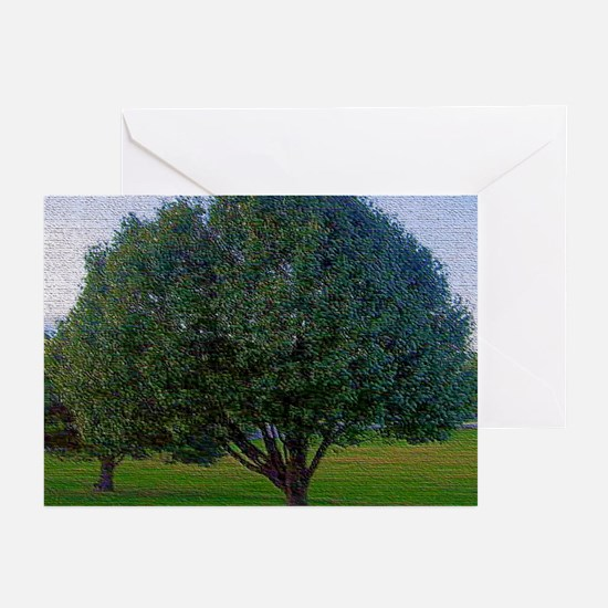 'Color of Life' Greeting Cards (Pk of 10)
