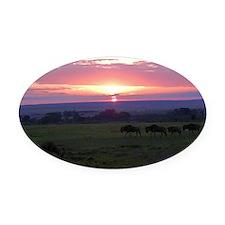 maasai mara sunset kenya collectio Oval Car Magnet
