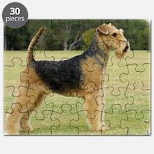Airedale Terrier 9P011D-027 Puzzle