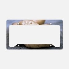 Potatoes (Solanum tuberosum ' License Plate Holder