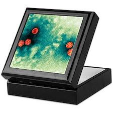 Polyoma virus particles, TEM Keepsake Box