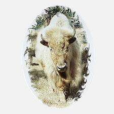 SACRED WHITE BUFFALO Oval Ornament