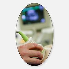 Pregnancy ultrasound Sticker (Oval)