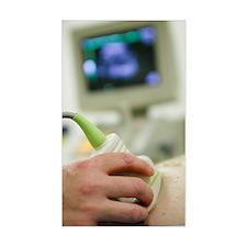 Pregnancy ultrasound Decal