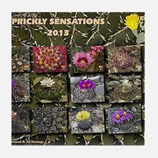 Prickly sensations calendar Tile Coaster