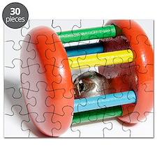 Rattle Puzzle