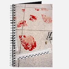 Recording evidence Journal
