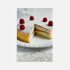 Raspberry sponge cake Rectangle Magnet