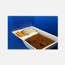 Ready meal, computer artwork Rectangle Magnet