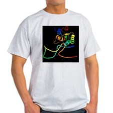 Ribosome and mRNA T-Shirt