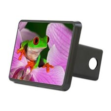 Red-eyed tree frog on flow Hitch Cover