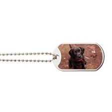 9-week old puppy Dog Tags