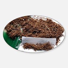 Rolling tobacco Sticker (Oval)