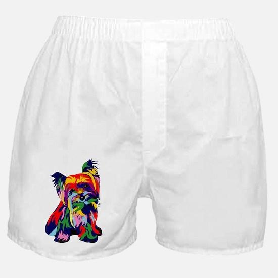 Bright Rainbow Yorkie Boxer Shorts