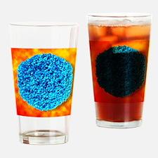 Rhinovirus Drinking Glass