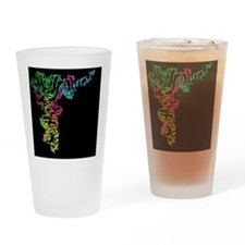 Ribosomal RNA Drinking Glass