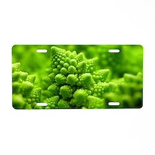 Romanesco cauliflower head Aluminum License Plate
