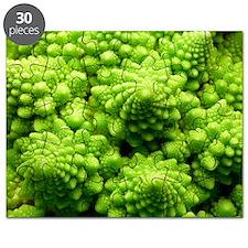 Romanesco cauliflower head Puzzle