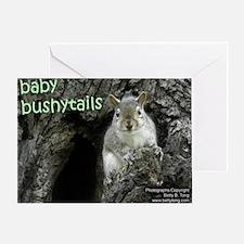 Baby Bushytails Greeting Card