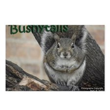 Bushytails Postcards (Package of 8)