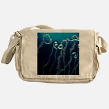 Roots of Thale cress plant, Arabidop Messenger Bag