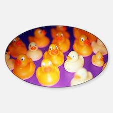 Rubber ducks Decal