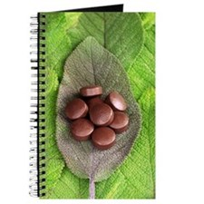 Sage oil pills on sage leaves Journal