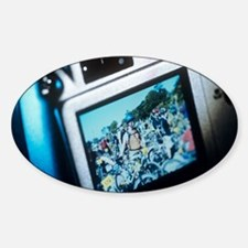 Screen on a digital camera Decal