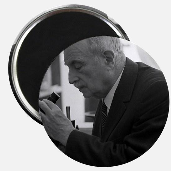 Semyon Volfkovich, Soviet chemist Magnet