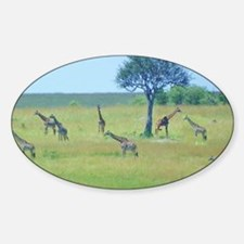 Giraffe Meadow Kenya Collection Decal