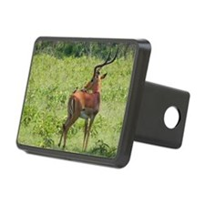 impala buck with oxpeckers Hitch Cover