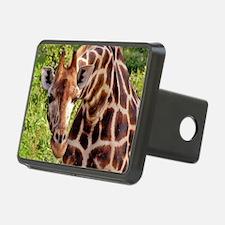 rothschild giraffe looking Hitch Cover