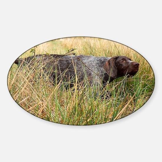 In the Field Sticker (Oval)
