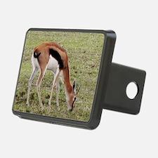 young thompsons gazelle ke Hitch Cover