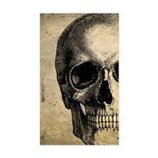 Vintage Skull Decal