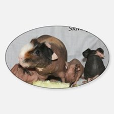Skinny Pigs Decal
