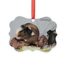 Skinny Pigs Ornament