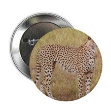 "cheetah brother kenya collection 2.25"" Button"