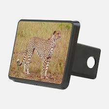 cheetah brother kenya coll Hitch Cover