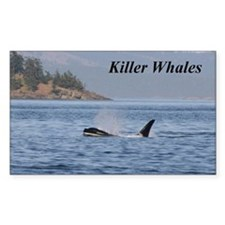 killer whales Decal