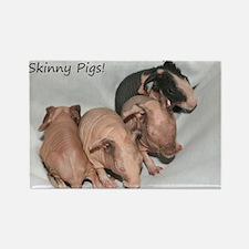 Skinny pigs Rectangle Magnet
