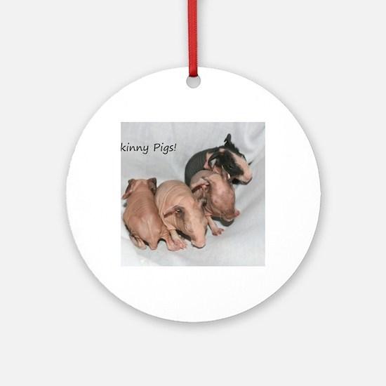 Skinny pigs Round Ornament