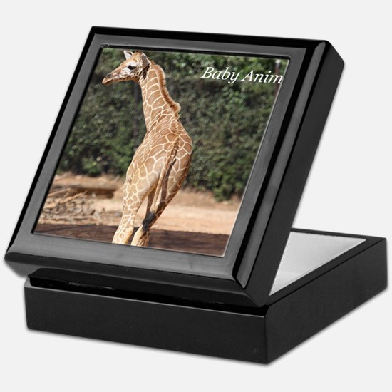 Baby Animals Keepsake Box