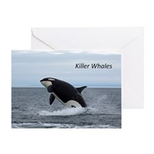 Killer Whales Greeting Card