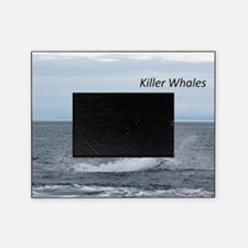 Killer Whales Picture Frame