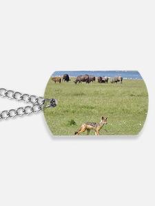 silverbacked jackal nakuru kenya collecti Dog Tags