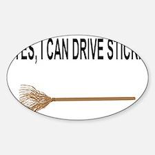 drive stick Sticker (Oval)