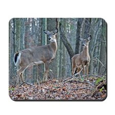 Doe and fawn Mousepad